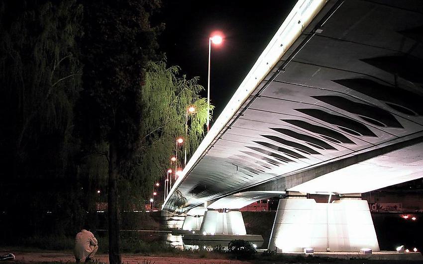 image from Puente Principe de Asturias