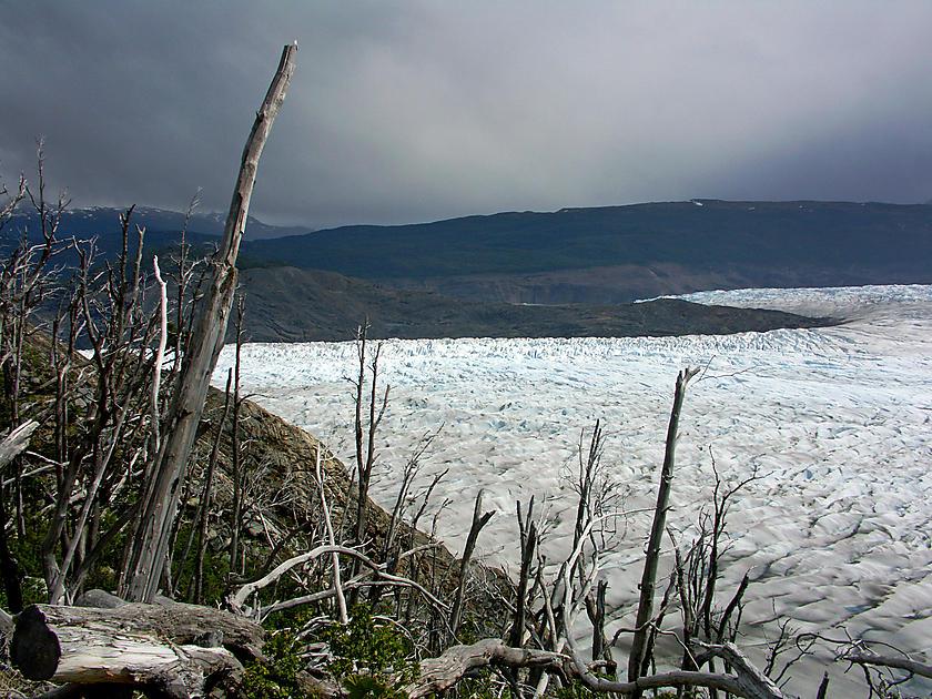 image from Glaciar Grey