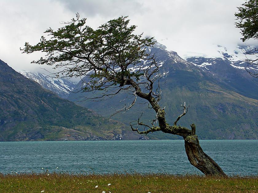 image from Última Esperanza