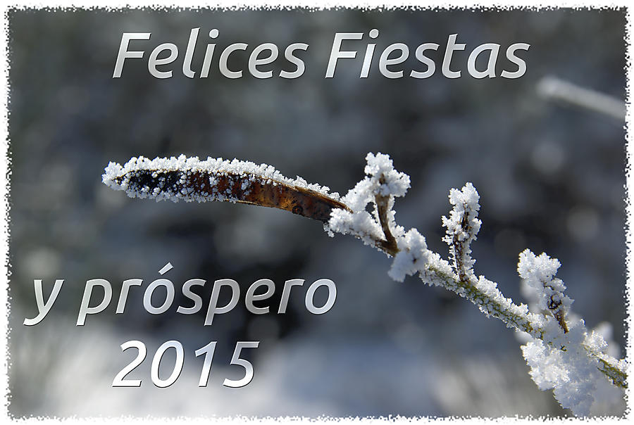 image from Felices Fiestas